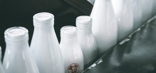 milk bottles, milk farm, milk production