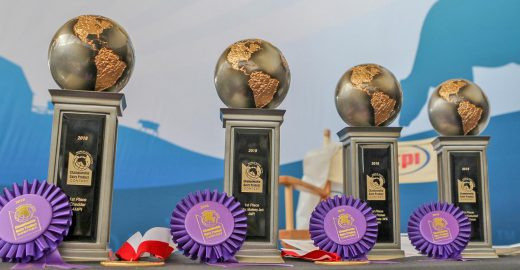 AMPI 1st place prizes, 2018 World Dairy Expo Championship Dairy Product Contest, AMPI Wins Dairy Awards